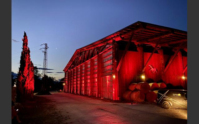 Night of Light: Alps Coliseum Neumarkt