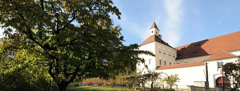 hofburggarten.jpg
