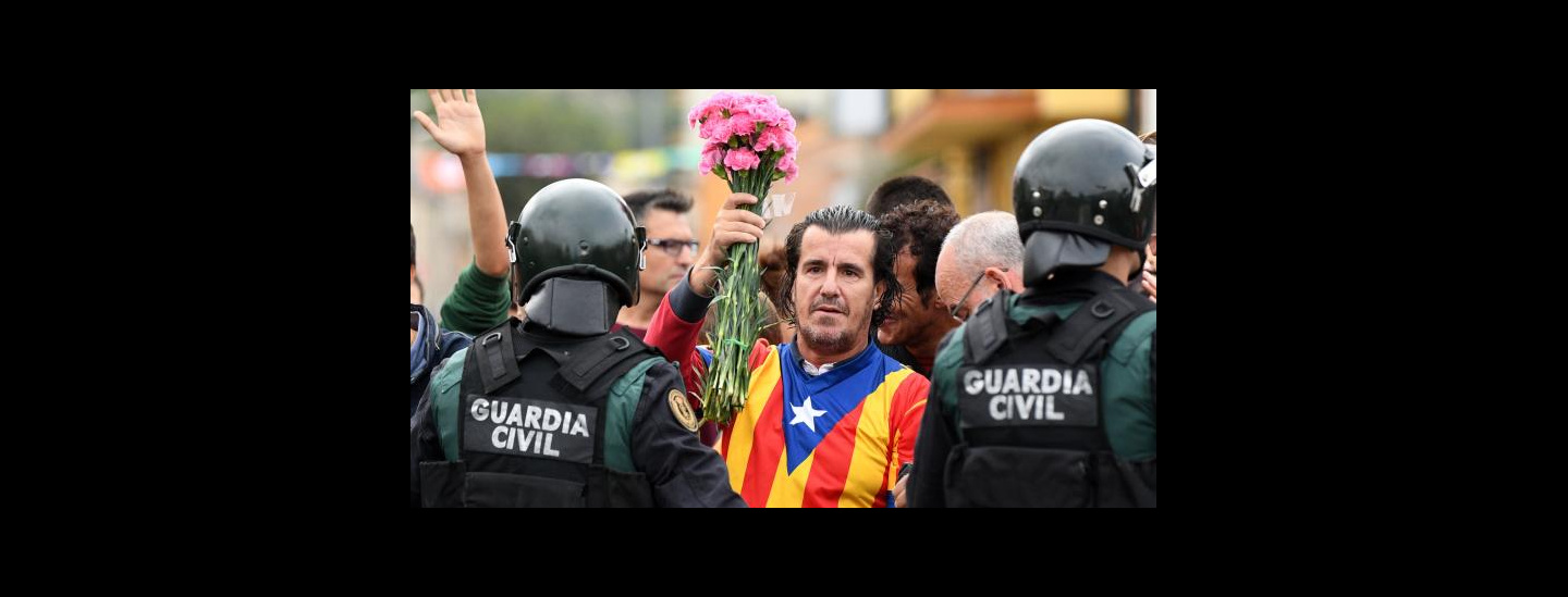 flowers for catalunya