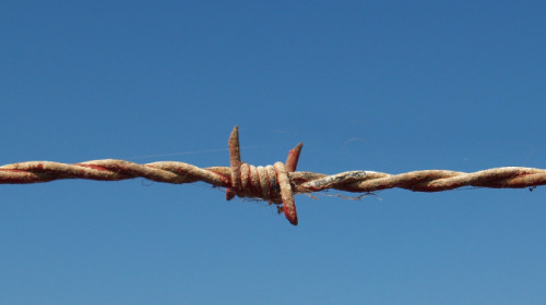 barbed-wire-1199172_1920.jpg