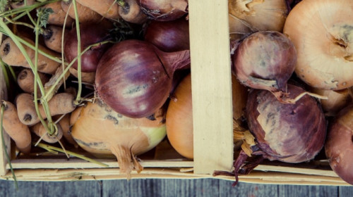 vegetables-1679947_1920.jpg