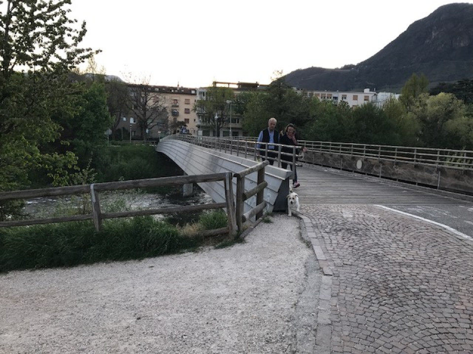ponte_6.jpeg
